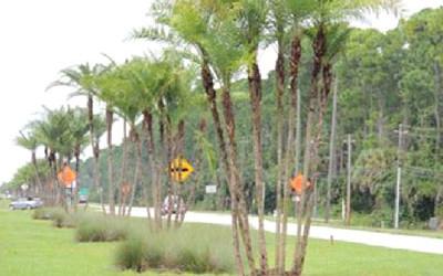 Beville Road Daytona Beach Fl